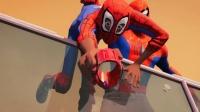 《蜘蛛侠》北美票房登顶,《龙猫》领跑内地新片