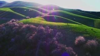 大自然的鬼斧神工 景色竟然真的可以美成这样!