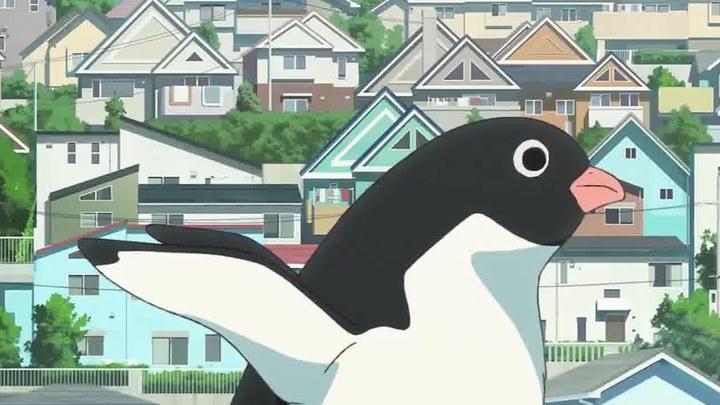 企鹅公路 片段3:企鹅出没 (中文字幕)