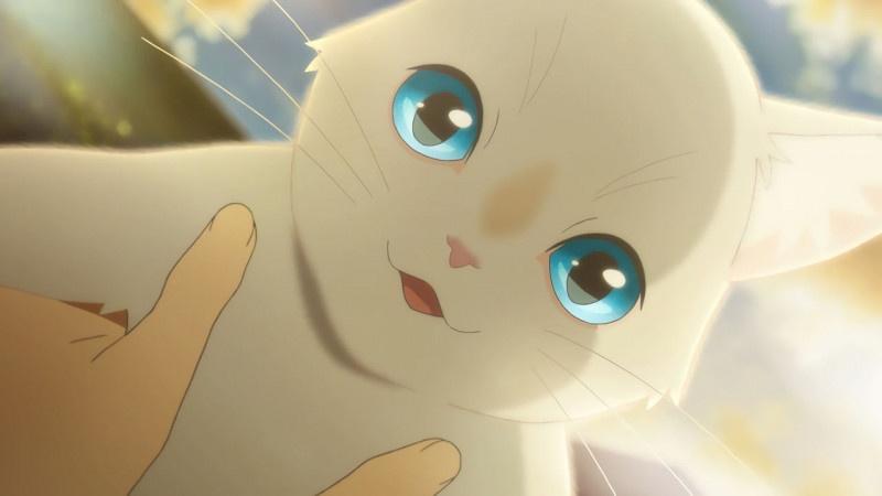 《想哭的我戴上了猫的面具》预告片