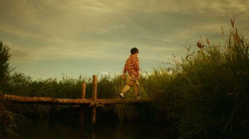 """《向阳的日子》定档预告片 时尚摄影师""""陪伴瞬间""""令人动容"""