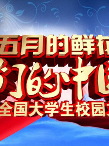 2013央视五四晚会