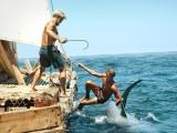 20期:《孤筏重洋》推介 挪威影史上的投资之最