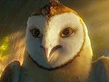 猫头鹰王国:守卫者传奇 主题曲版预告片