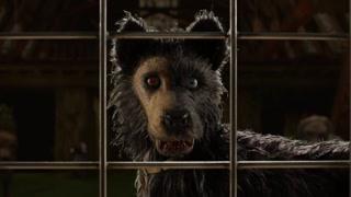 市长的狗被黑狗连夜偷走并帮它打开了锁 这一切背后有什么阴谋