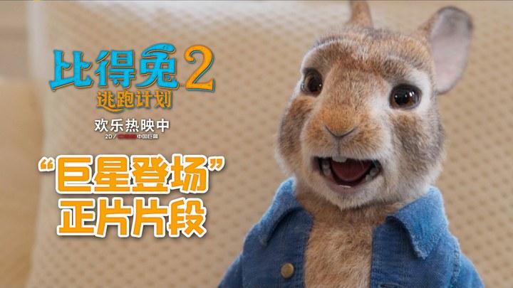 比得兔2:逃跑计划 片段1 (中文字幕)