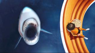 这只讨厌的鲨鱼