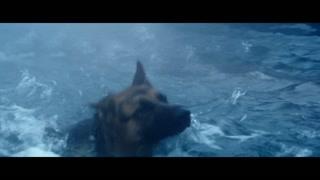 艾丽下水救回人质