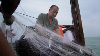吴镇城出海捕鱼 他对食材的新鲜非常看重