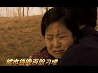 小麦进城-凤凰女的婚姻保卫战