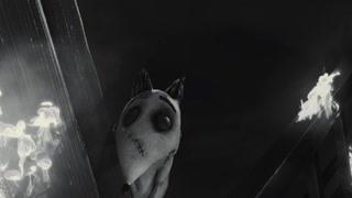 小狗英勇救人 果真是人类最忠实的朋友