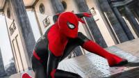 蜘蛛侠平行宇宙,我是彼得·帕克