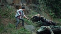 荒岛密林深藏巨鳄与食人花