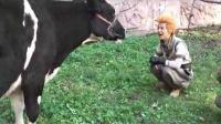 《嘻游记》何炅逗牛为哪般?