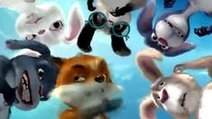 兔子镇的火狐狸 预告片