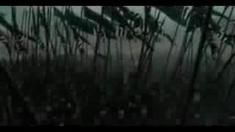 江山美人 剧场版预告片2