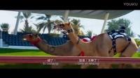张国立的骆驼空吐白沫一路狂飚夺冠