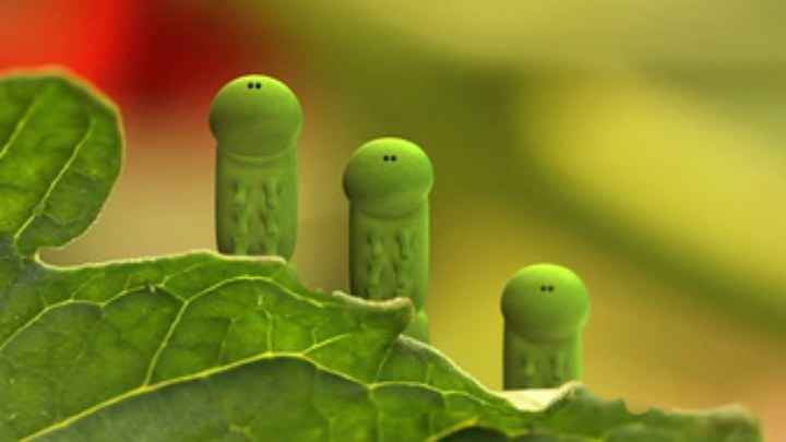 昆虫总动员 其它预告片1:《菜园大作战》病毒短片