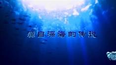 摩尔庄园2海妖宝藏 预告片