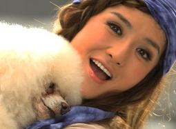 《快乐到家》特辑 众星当绿叶导演对狗的演技放心