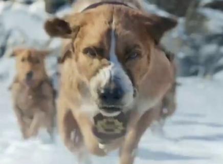 《野性的呼唤》预告 灵犬巴克勇闯冰雪荒原