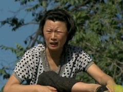《乡村爱情5》傲娇蹿上房卡住下不来