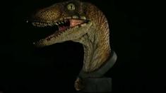 《侏罗纪公园》迅猛龙胸像