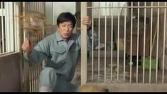 向日葵与幼犬的7天 预告片