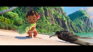 老鹰竟然想吃小海龟! 莫阿娜护送小海龟