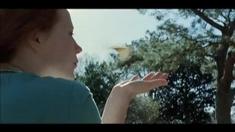 生命之树 制作特辑之Cinematographer Emmanuel Lubezki