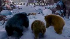 丛林有情狼 中文版预告片