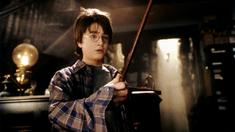 哈利·波特与魔法石 神奇咒语版片段