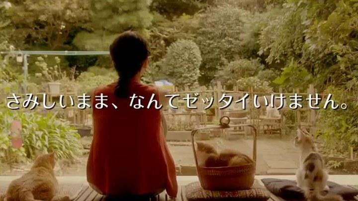 租赁猫 日本预告片3