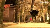 魔幻3D《白狐》曝动作特辑 仙魔狂战幕后解密