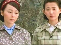 望海的女人-27:金水死小猪病,淑萍心力交瘁