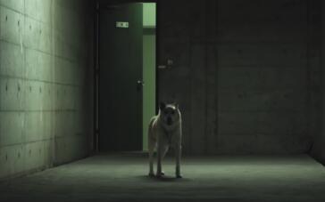 《屏住呼吸》 电影预告片