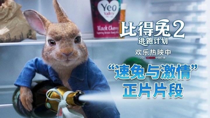比得兔2:逃跑计划 片段2 (中文字幕)
