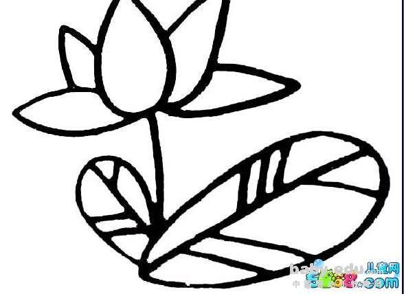 表情 简单好看的花简笔画 莲花盛开了 花朵简笔画 中国婴幼儿教育网 表情