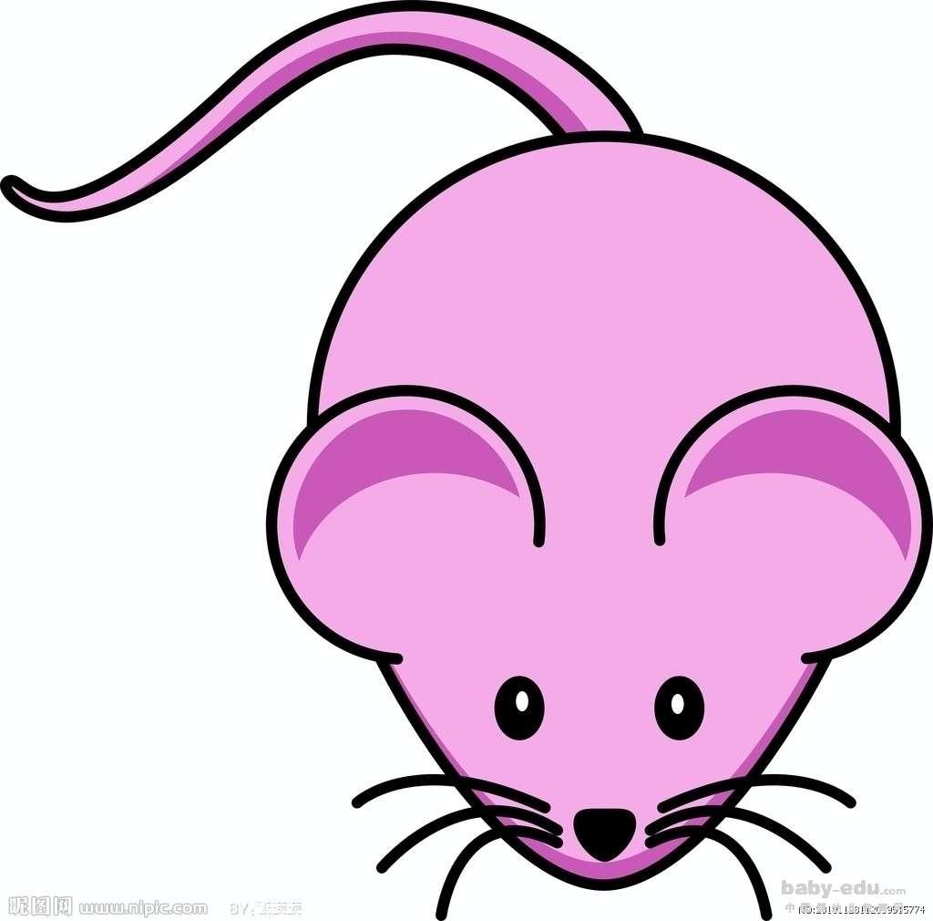 表情 动物简笔画大全讨人厌的老鼠 动物简笔画 中国婴幼儿教育网 表情