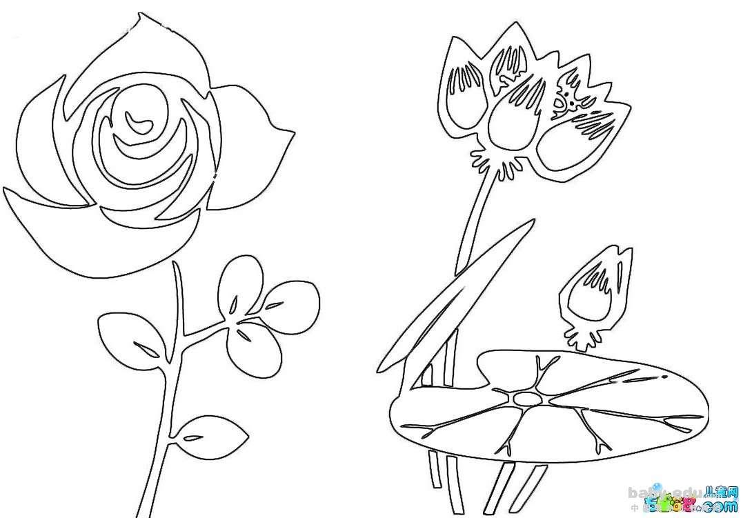 表情 简笔画玫瑰花的画法 盛开的玫瑰花 植物简笔画 中国婴幼儿教育网 表情
