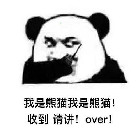 猫我是熊猫! 收到请讲!over!-表情 呼叫over表情包大全 呼叫over