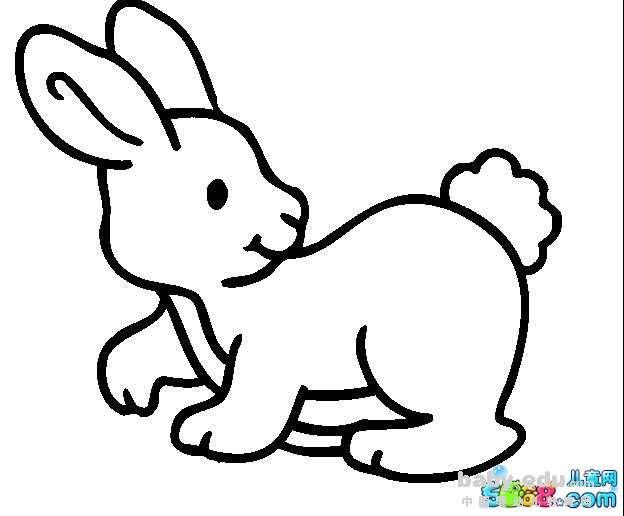 表情 q版玉兔简笔画 调皮的小兔子 动物简笔画 中国婴幼儿教育网 表情