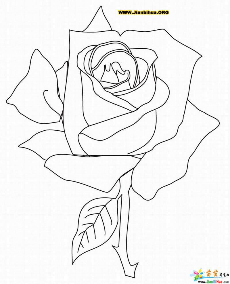 表情 玫瑰花简笔画的画法2张图片 表情