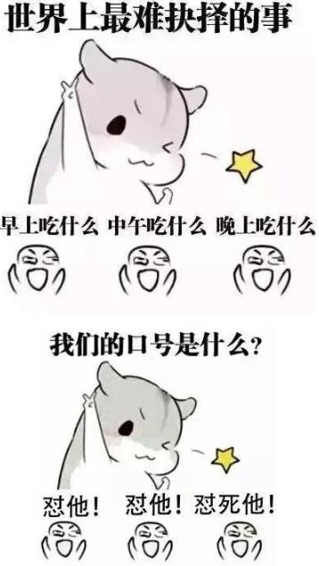 表情 小仓鼠表情包原图图片展示 小仓鼠表情包原图相关图片下载 表情