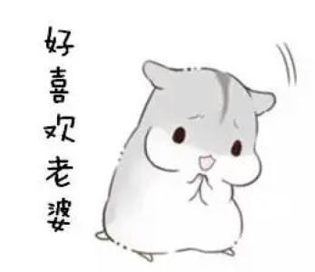 表情 小仓鼠情侣卖萌表情包 小仓鼠突然出现表情包 小仓鼠表情包老公