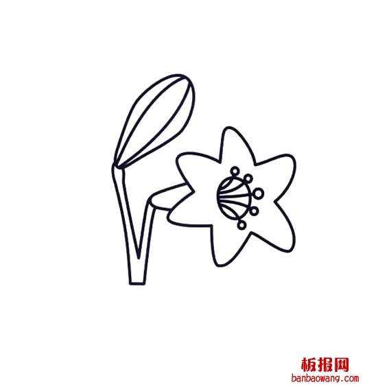 表情 百合花朵的简笔画法花卉类 中华板报网 表情