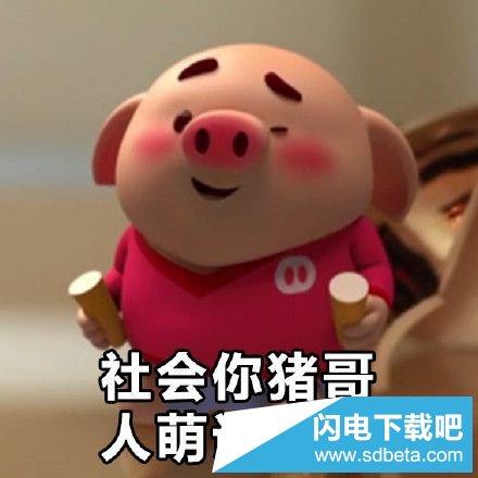 表情 猪小屁猪头表情包图片大全小猪猪小屁猪头表情包图片合集最新呆萌 表情图片