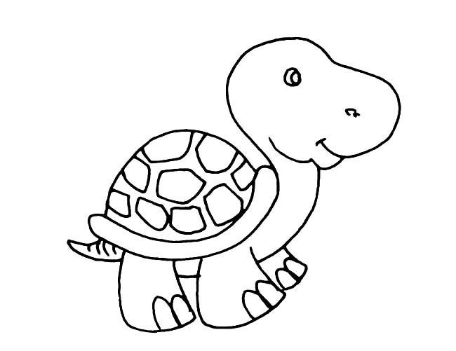 表情 卡通小乌龟简笔画图片小逗汇智幼教网 表情