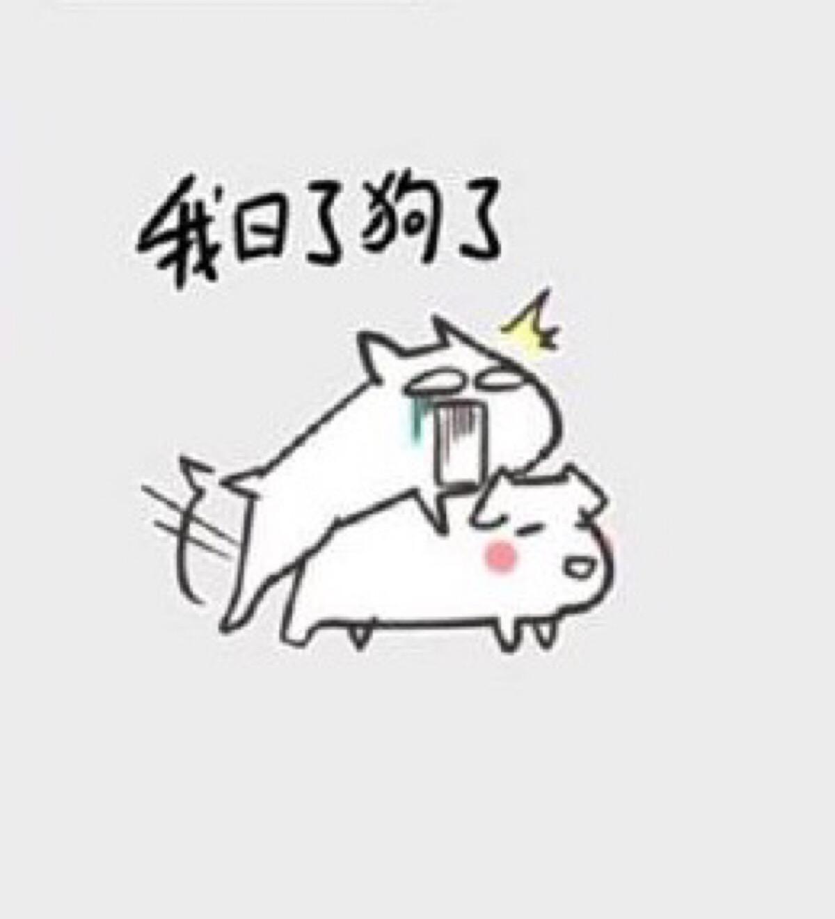 动漫图片狗狗图片_妖精的尾巴中文网