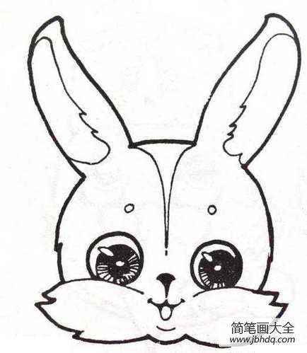 表情 兔子头像简笔画 兔子简笔画 简笔画大全 表情